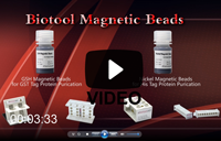 Video | Bimake Magnetic Beads